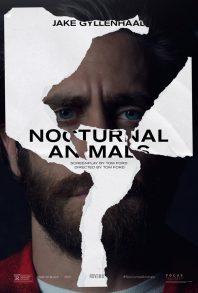 TIFF16: Nocturnal Animals